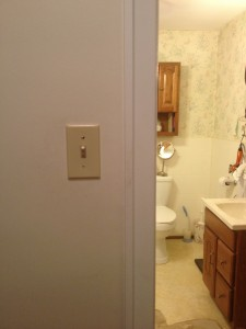 a light switch - outside of the bathroom? I'm sure that makes sense to someone.