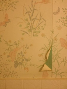 too bad the lovely butterfly wallpaper is peeling